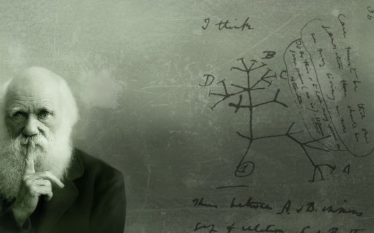 Darwin and his tree of life